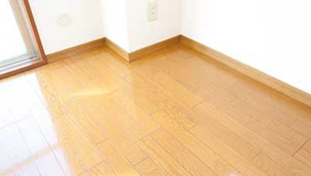 Wood Floor Cleaning & Polishing